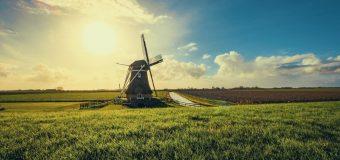 Polacy w Holandii – największa grupa imigrantów z Europy!
